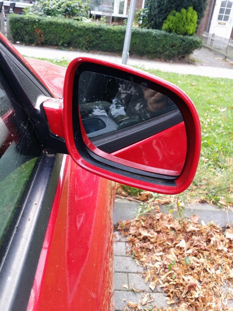 'Wat een mooi nieuw spiegeltje!'